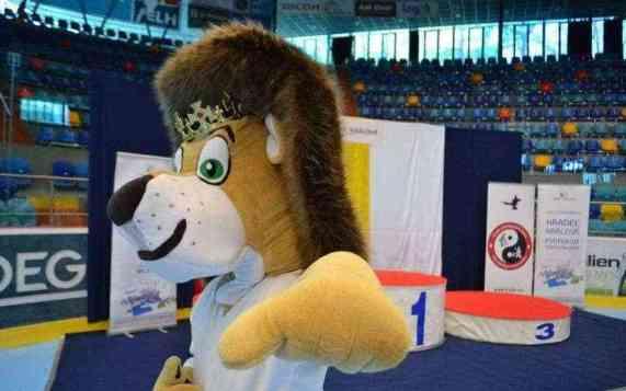 campionati-europei-karate-2017-9 - Karate. Tre campionesse europee per Milano  - Altri sport Sport