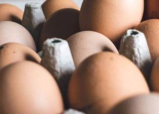 Uova di gallina