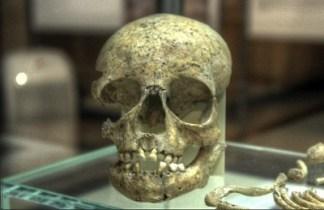 Europa-sepololtura-di-bambina-ritrovata-negli-scavi-della-M4-324x210 Europa, la mascotte della necropoli di San Babila a Milano Costume e Società Cultura