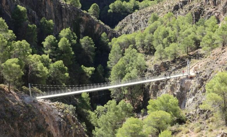 canillas-de-aceituno-inaugura-el-saltillo,-uno-de-los-puentes-colgantes-mas-grandes-de-espana-con-50-metros-de-largo-y-no-apto-para-vertiginosos