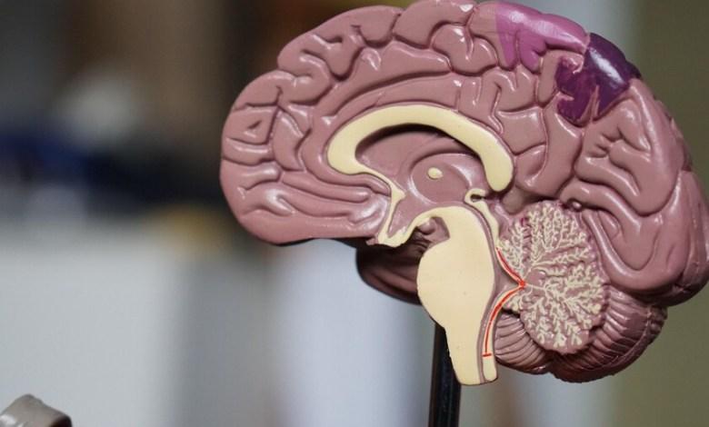 cerebros,-bolsillos-y-trastornos-emocionales:-asi-es-como-la-sociedad-(y-la-economia)-impacta-en-nuestra-salud-mental