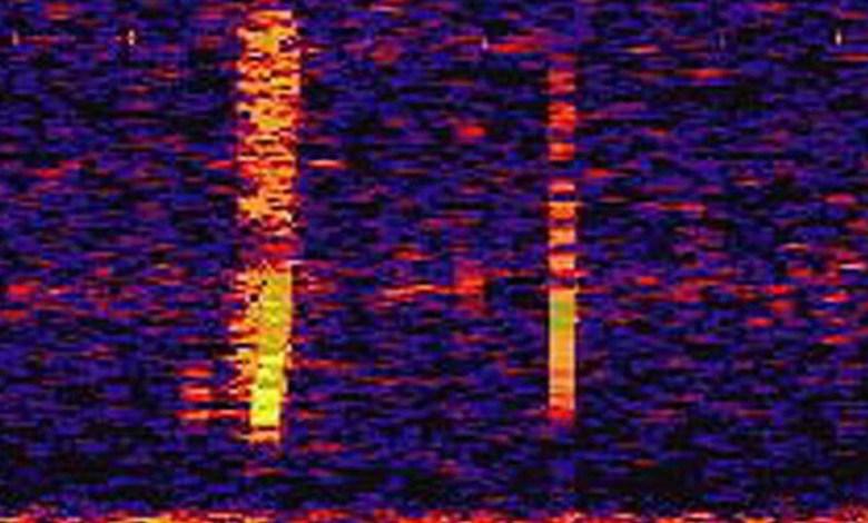 el-misterio-de-bloop:-un-extranisimo-ultrasonido-subacuatico-detectado-en-1997-que-provoco-todo-tipo-de-locas-teorias