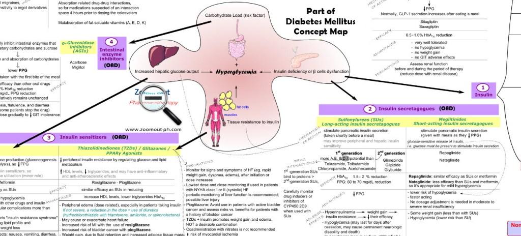 diabetes_mellitus_pathophysiology_treatment_map_zoom_out_pharmacotherapy 2