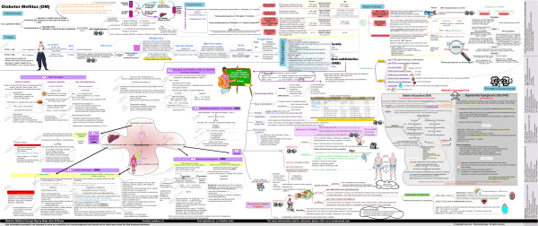 diabetes_mellitus_concept_map_version_zoom_out_pharmacotherapy