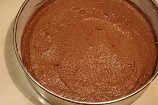 st-martins-cake-filled-spring-form-pan