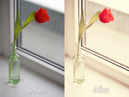 tulip - totally rad presets - before and after comparison