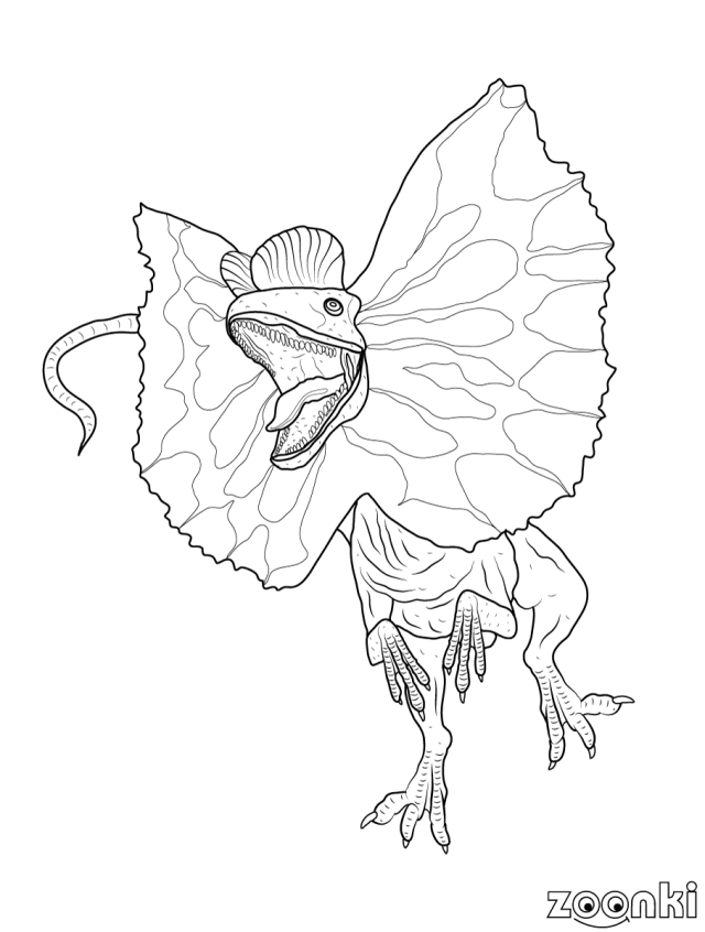 Dinosaurs colouring pages for kids - zoonki.com