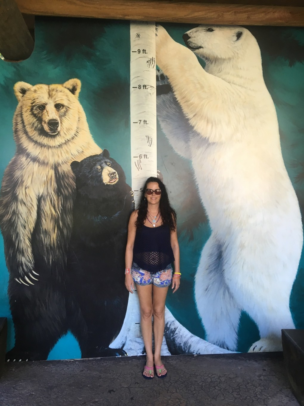 How Big is a Polar Bear - Polar Bear Size