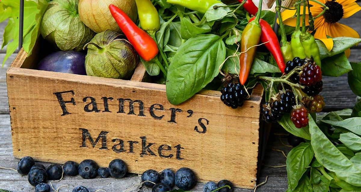 Why You Should Support Your Local Farmer's Markets