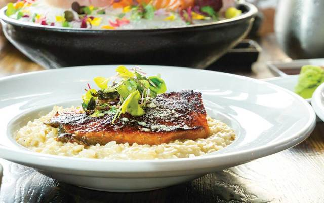 Brown risotto topped with salmon.