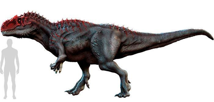 Allosaurus (Carnosauria). Por Herschel Hoffmeyer   Shutterstock.com