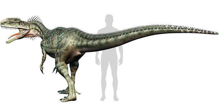 Monolophosaurus (Megalosauroidea). Por DM7   Shutterstock.com