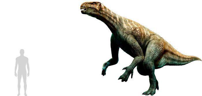 Iguanodon (Ornithopoda). Por Warpaint   Shutterstock.com