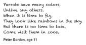 Kids Writing Parrots_Peter