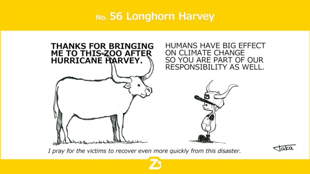 Longhorn Harvey