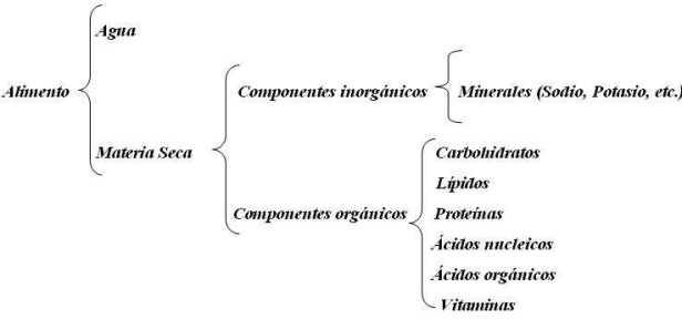 composicion nutricional de los alimentos