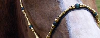 photo - Scarlet Arabian Bridles