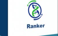 Wp Content Ranker Main