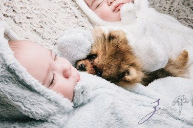 Double Woof: Fun Children Photography (17)