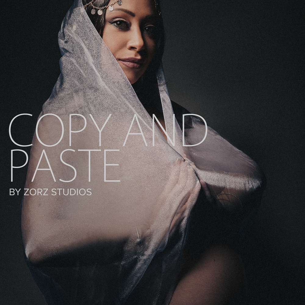 Copy and Paste: Fun Maternity Shoot | Zorz Studios (1)