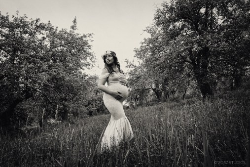 Creative Maternity and Pregnancy Photos in New York and Worldwide (56)