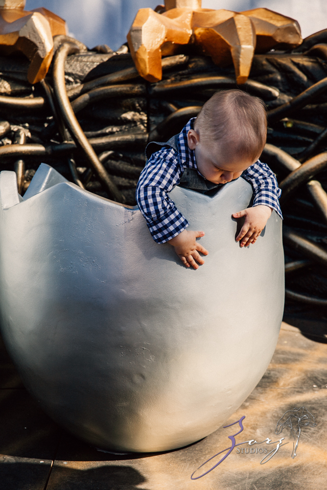 Cub: Outdoor Hilarious First Birthday Photoshoot by Zorz Studios (15)