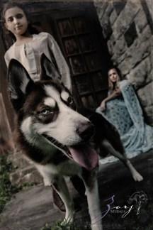 Game of Thrones Inspired Birthday Photoshoot by Zorz Studios (21)