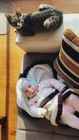 Veya: Newborn Photo Shoot for Nature's Child by Zorz Studios (17)