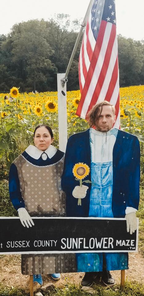 Sunmaze: My Family in Sunflowers by Zorz Studios (5)