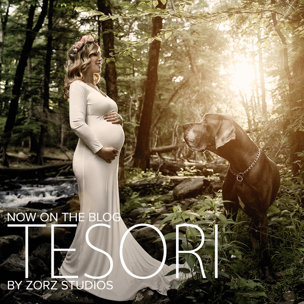 Tesori: Maternity Photoshoot in Poconos by Zorz Studios (1)