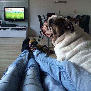 Bink is graag overal bij... overalllll.. zo ook bij een spannende voetbal wedstrijd