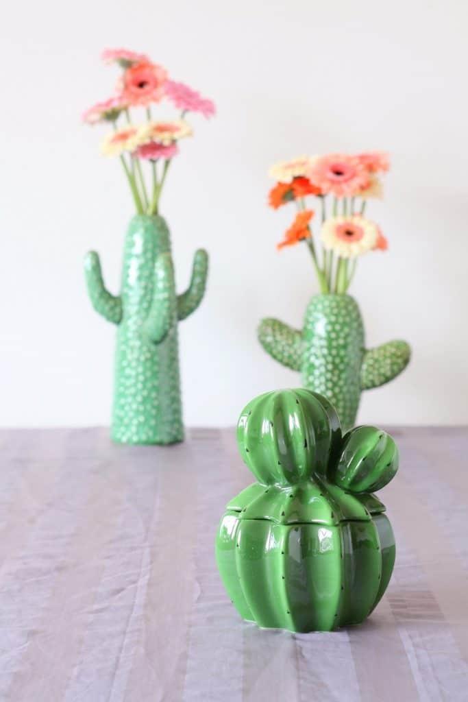 cactus &Klevering