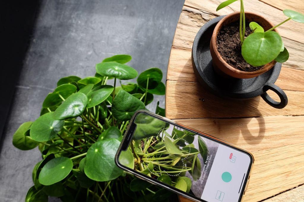 Planten app