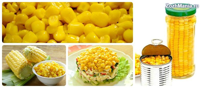 Белковые продукты с минусовой калорийностью – едим и худеем. Список продуктов с отрицательной калорийностью