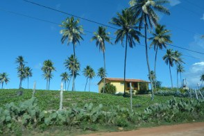 Estrada do Coco, Bahia