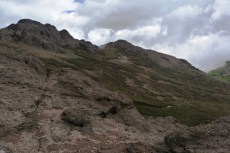 Chimborazo Bosque de Polylepis (2)