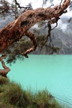 Cordillera Blanca Peru (3)