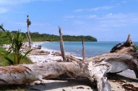 Kostaryka - PN Cahuita