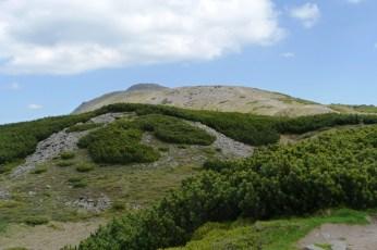 Babia Góra, ze szlaku 1