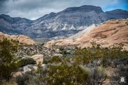 Red Rock Canyon - Las Vegas - USA