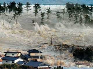 Цунамі, що обрушилося на узбережжя Японії у 2011 році