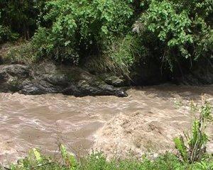 Повінь на річці в Еквадорі. Вода коричнева, бо швидкий потік переносить багато осаду