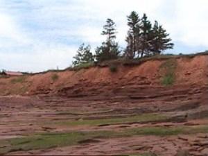 Осадові породи на Острові Принца Едварда (Канада). Ми бачимо, що на їх поверхні сформувався шар ґрунту; це свідчить про те, що пройшов деякий проміжок часу з тих пір, як ці осадові пласти були нанесені повенями
