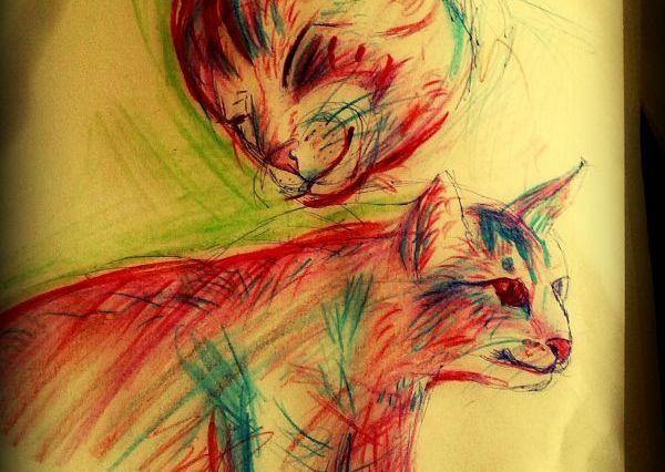 Náčrt dvou růžových koček - jednoho koťátka se zvědavým výrazem a druhá kočka je nejspíše máma, kouká na kotě shovívavě.