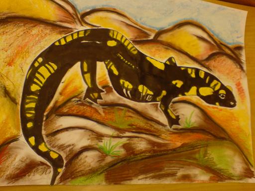 Dětská malba žlutočerného mloka na kamení.
