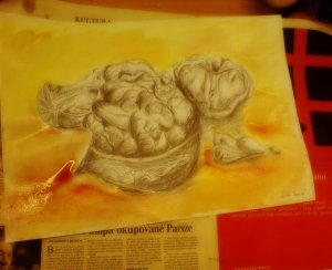 Akvarelová malba vlašských ořechů na červenožlutém pozadí.