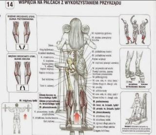 Jak ćwiczyć łydki