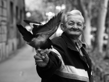 A Pigeon Lover.