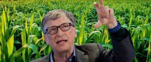 Фермер Билл Гейтс | Блог З.С.В. Свобода слова