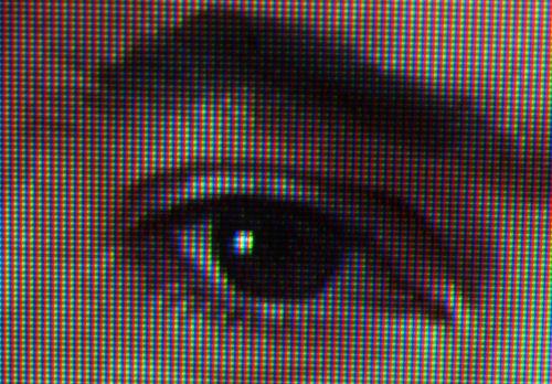 wdtv_video_demo_detalhea